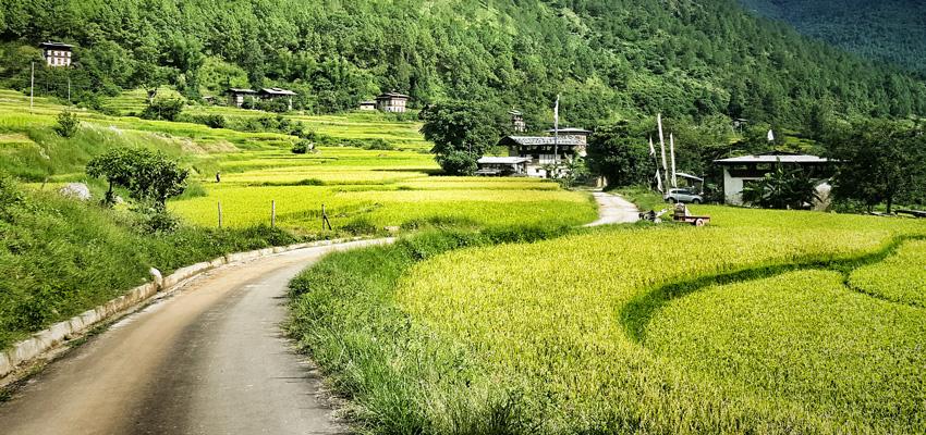 Bhutan #1 Green Destination